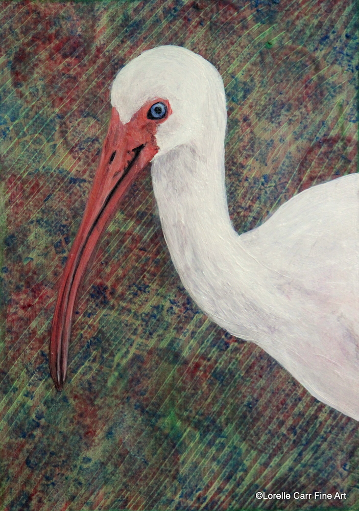 Day 9 - American White Ibis, Acrylic on 5 X 7 Cradle Board, $68.00