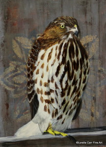 Day 38 - Red-Tailed Hawk, Acrylic on 6 X 8 Cradle Board, $94.00