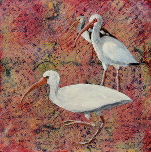 Day 59 - American White Ibis, Acrylic 8 X 8 on Cradle Board, $88.00.
