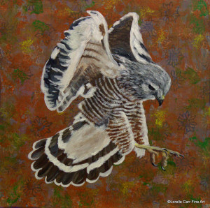 Day 70 - Red-shouldered Hawk, Acrylic on 8 X 8 Cradle Board, $90.00.